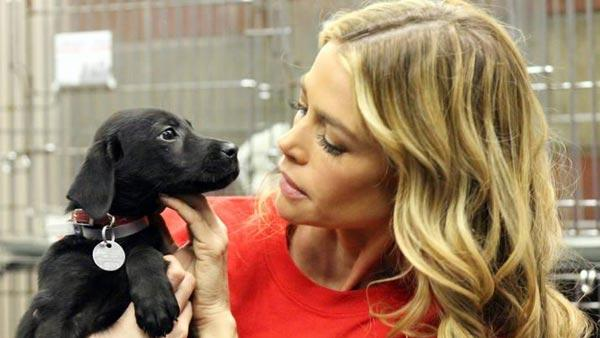 Denise Richards appears in a November 8 photo with her new puppy Tara from North Shore Animal League Americas Facebook page. - Provided courtesy of facebook.com/theanimalleague