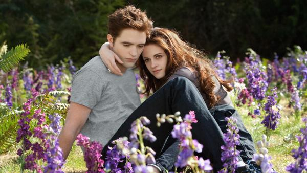 Kristen Stewart and Robert Pattinson appear in a scene from the 2012 movie 'Twilight: Breaking Dawn - Part 2.'