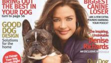Denise Richards and her dog, Hank, are pictured on the cover of Modern Dog magazines Fall 2011 issue. - Provided courtesy of Modern Dog Inc.