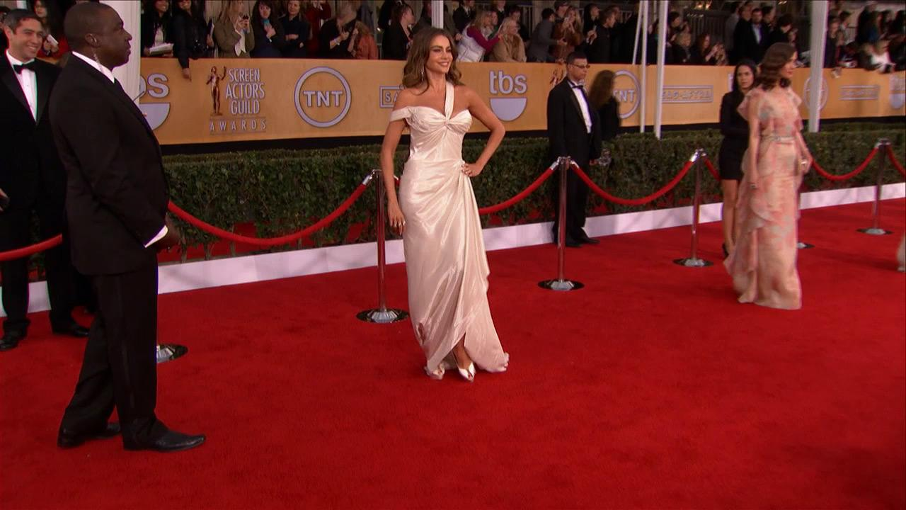 Sofia Vergara (Modern Family) poses on the red carpet at the 2013 SAG Awards in Los Angeles on Jan. 27, 2013.