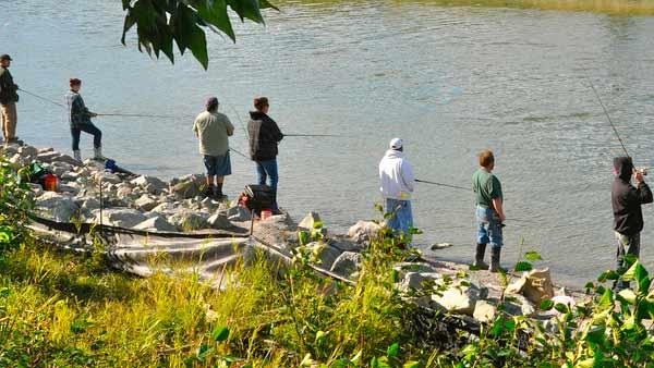 Anglers fish for salmon in Anchorage, Alaska in August 2011. - Provided courtesy of flickr.com/photos/acvbpr/6036918336/
