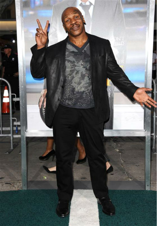 Mike Tyson can certainly appreciate a perfect hair day.  &#40;Pictured: Mike Tyson appears at the premiere of &#39;Draft Day&#39; in Westwood, near Los Angeles, on April 7, 2014.&#41; <span class=meta>(Sara De Boer &#47; Startraksphoto.com)</span>