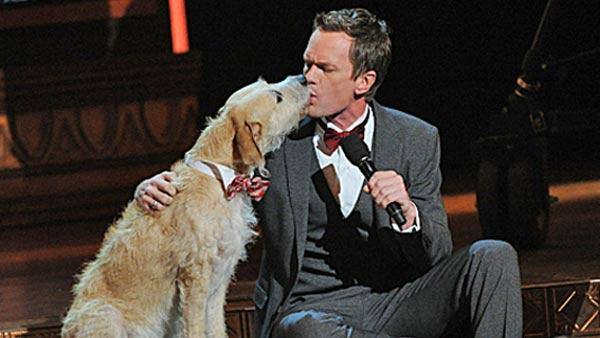 Neil Patrick Harris and Sandy, from the play Annie during the 2013 Tony Awards broadcast live from Radio City Music Hall in New York City, Sunday, June 9. - Provided courtesy of CBS / Heather Wines
