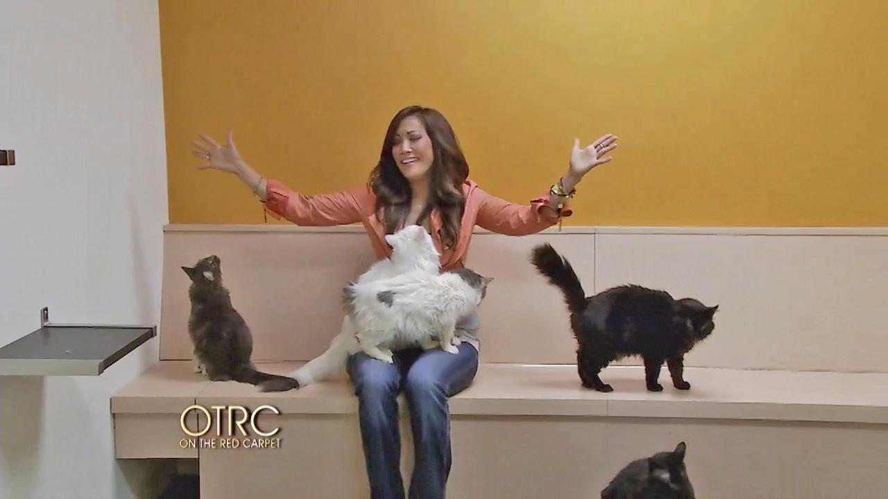 Carrie Ann Inaba sits with cats at the Perrys Place cat sanctuary in North Hollywood on April 25, 2013.