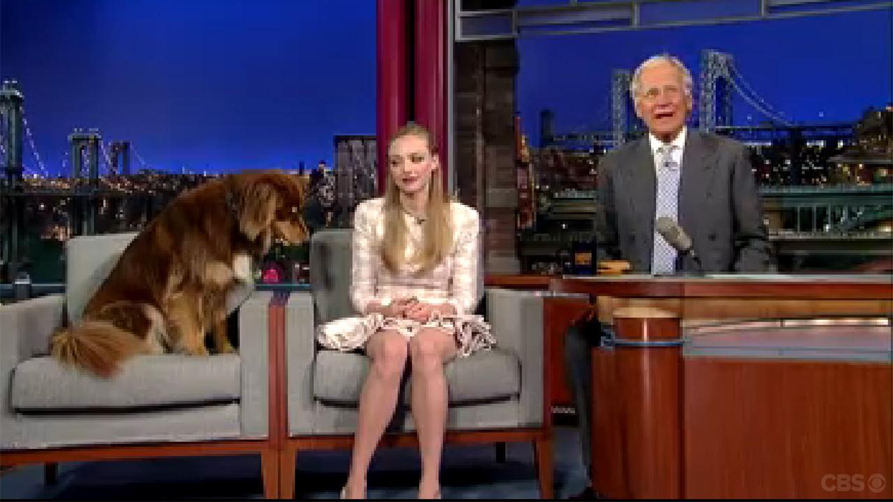 Amanda Seyfried and her dog, Finn, appear on The Late Show With David Letterman on July 30, 2013. The actress is promoting her newest film, Lovelace.
