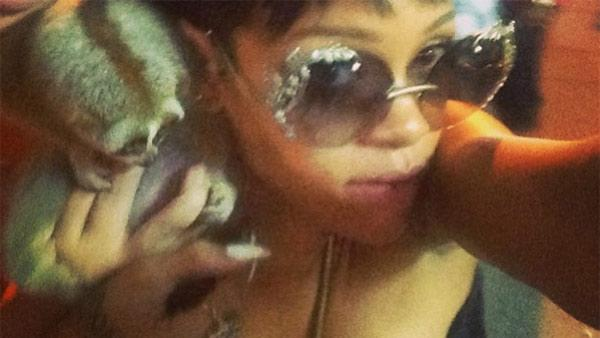 Rihanna appears with an endangered primate in Thailand, as seen in a photo posted on her Instagram page on Sept. 20, 2013. - Provided courtesy of instagram.com/p/efvnHRBM3B/ instagram.com/badgalriri