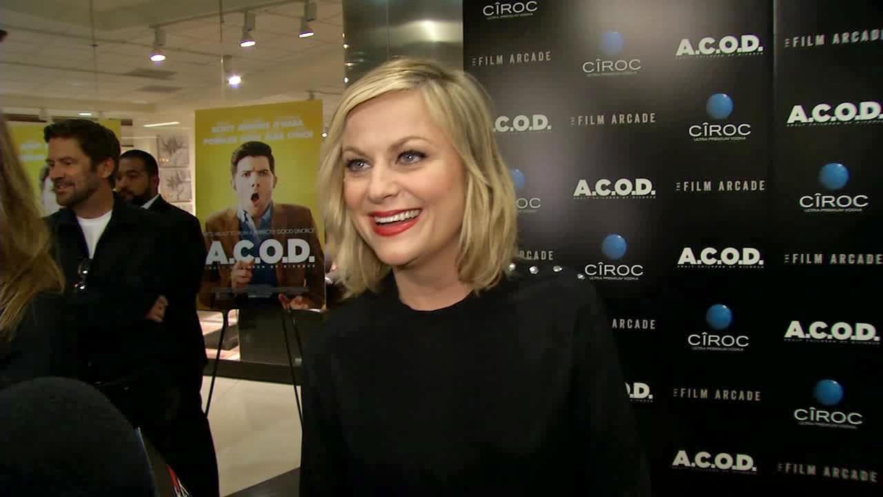 Amy Poehler appears at the premiere of A.C.O.D. on Sept. 26, 2013.