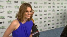 Stana Katic (Castle) at the 2014 Independent Spirit Awards on