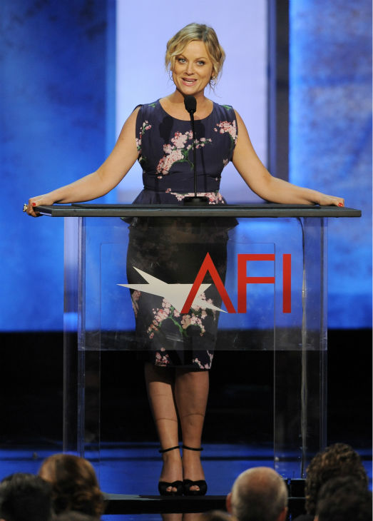 "<div class=""meta ""><span class=""caption-text "">Amy Poehler delivers a testimonial to honoree Mel Brooks during the American Film Institute's 41st Lifetime Achievement Award Gala at the Dolby Theatre in Los Angeles on Thursday, June 6, 2013. (Chris Pizzello / Invision / AP)</span></div>"