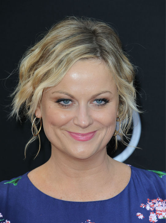 Amy Poehler walks the red carpet at the American Film Institute&#39;s 41st Lifetime Achievement Gala, honoring Mel Brooks, at the Dolby Theatre in Los Angeles on Thursday, June 6, 2013. <span class=meta>(Katy Winn &#47; Invision &#47; AP)</span>