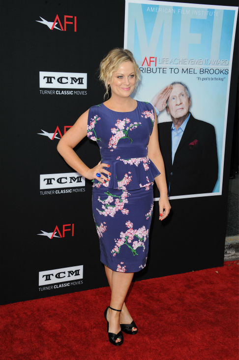 "<div class=""meta ""><span class=""caption-text "">Amy Poehler walks the red carpet at the American Film Institute's 41st Lifetime Achievement Gala, honoring Mel Brooks, at the Dolby Theatre in Los Angeles on Thursday, June 6, 2013. (Katy Winn / Invision / AP)</span></div>"