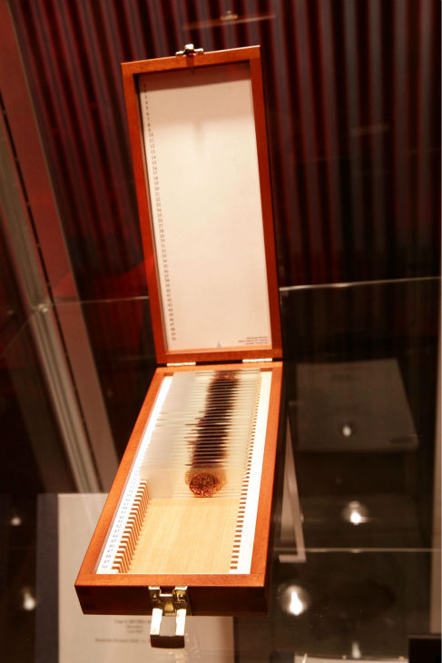 "<div class=""meta ""><span class=""caption-text "">A prop of Dexter's blood slides is shown at Showtime's premiere of 'Dexter' season 8 in Los Angeles on June, 15, 2013. (Eric Charbonneau / Invision for Showtime)</span></div>"