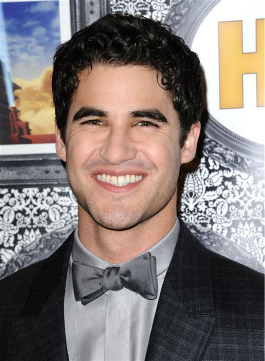 "<div class=""meta image-caption""><div class=""origin-logo origin-image ""><span></span></div><span class=""caption-text"">Darren Criss (Blaine on FOX's 'Glee') appears at the Family Equality Council's Los Angeles Awards Dinner on Feb. 8, 2014. (Sara De Boer / Startraksphoto.com)</span></div>"