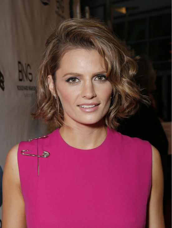Stana Katic of ABC's 'Castle' attends the West Coast premiere of 'CBGB,' in which she plays rock singer Genya Ravan, at the ArcLight Hollywood theater in Los Angeles on Tuesday, Oct. 1, 2013.