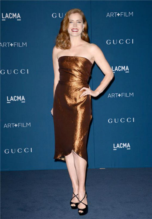 Amy Adams appears at the LACMA Art and Film Gala, honoring Martin Scorsese And David Hockney, at the Los Angeles County Museum of Art on Nov. 2, 2013.