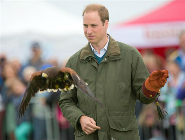 Prince William, Duke of Cambridge, holds a Harris Hawk during a falconry demonstration with birds of p