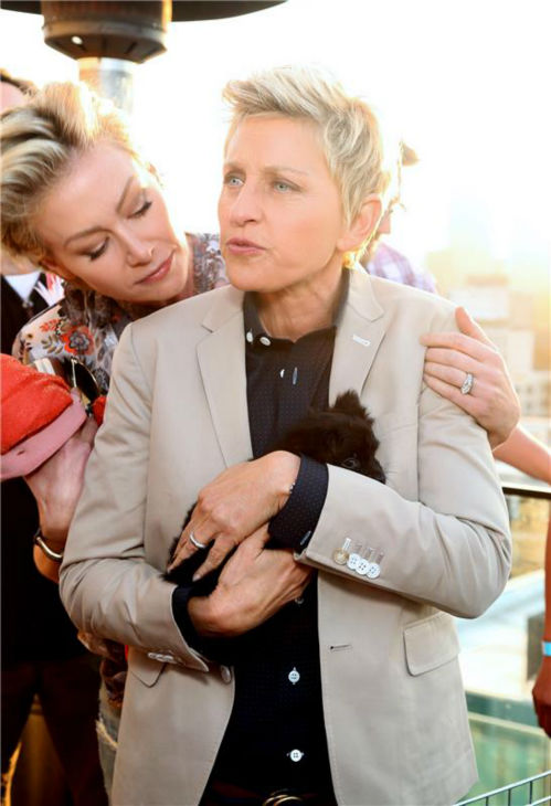 Ellen DeGeneres and wife Portia De Rossi appear at the Saving SPOT! benefit at the Thompson Beverly Hills hotel in California on Oct. 13, 2013. Saving SPOT! is a non-profit dedicated to rescuing dogs from high-risk environments and provides them with caring owners. <span class=meta>(Sara Jaye Weiss &#47; StartraksPhoto.com)</span>