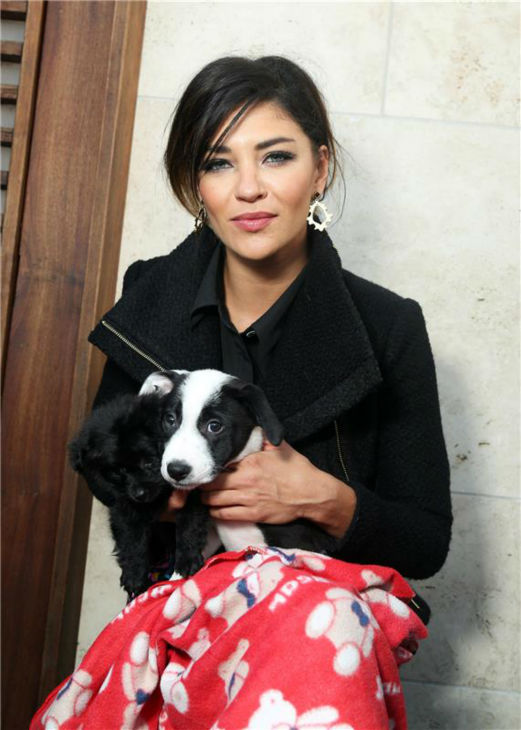 &#39;Gossip Girl&#39; alum Jessica Szohr appears at the Saving SPOT! benefit at the Thompson Beverly Hills hotel in California on Oct. 13, 2013. <span class=meta>(Sara Jaye Weiss &#47; StartraksPhoto.com)</span>