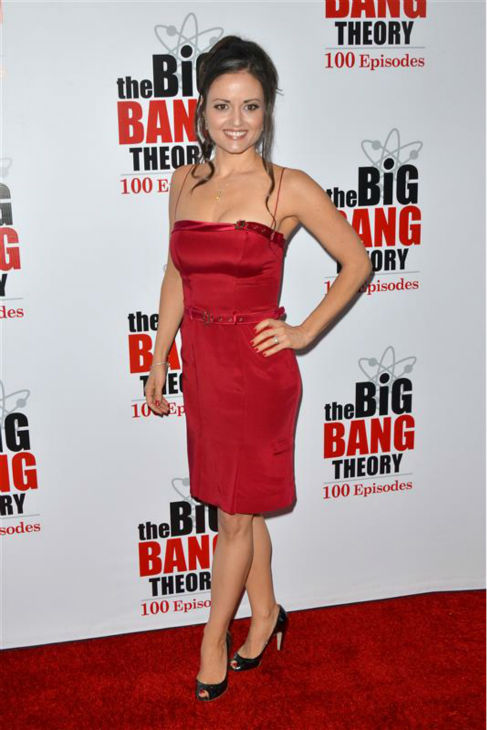 Danica McKellar &#40;&#39;The Wonder Years&#39; Winnie Cooper&#41; appears at the &#39;Big Bang Theory&#39;s 100th episode celebration at the California Science Center in Los Angeles on Dec. 15, 2011.  <span class=meta>(Tony DiMaio &#47; Startraksphoto.com)</span>