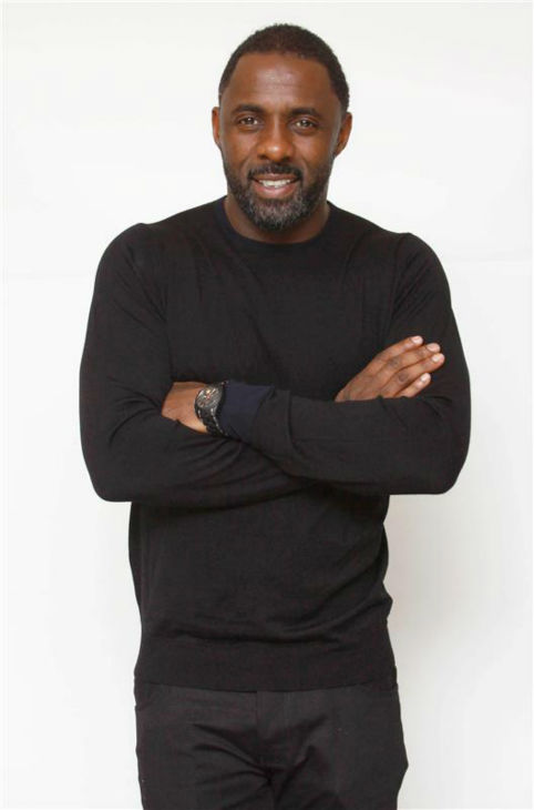 "<div class=""meta ""><span class=""caption-text "">Idris Elba appears at a press conference for 'Mandela: Long Walk To Freedom' at the Shutters on the Beach hotel in Santa Monica, California on Nov. 19, 2013. He plays the title role in the movie. You are extremely welcome for this pic. (Munawar Hosain / Startraksphoto.com)</span></div>"