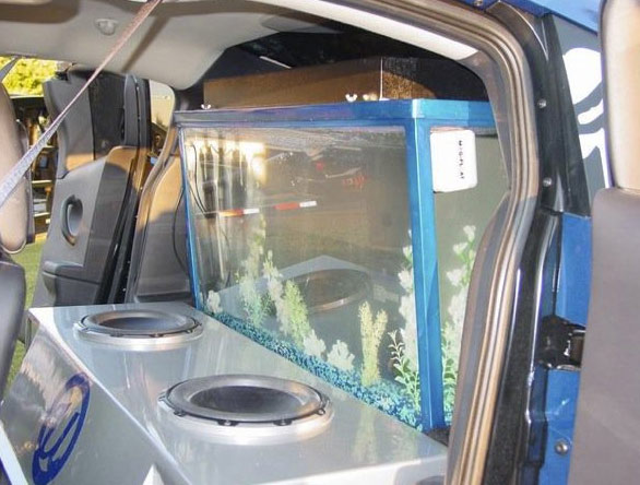 Usher's show car contains a fish tank by Acrylic Tank Manufacturing, as seen in this photo posted on the company's Facebook page.