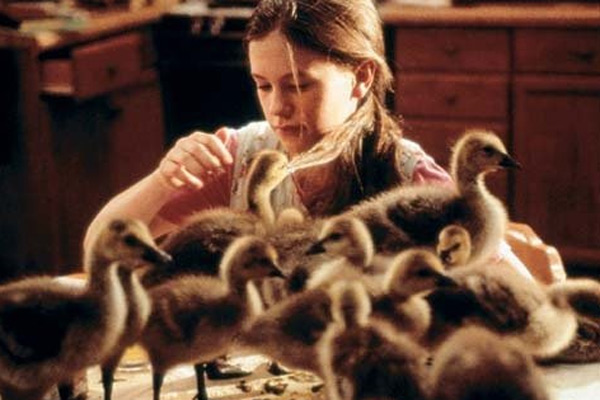 Anna Paquin appears in a scene from the 1996 film 'Fly Away Home.'