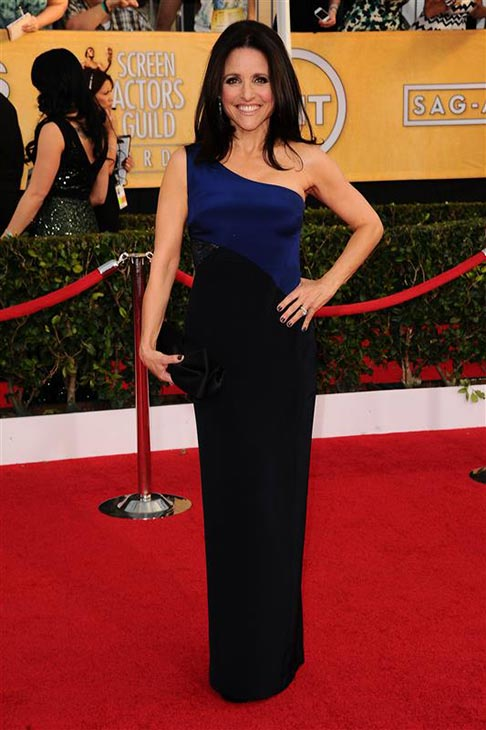 Julia Louis-Dreyfus-appears at the 2014 Screen Actors Guild &#40;SAG&#41; Awards in Los Angeles on Jan. 18, 2014. <span class=meta>(Kyle Rover &#47; Startraksphoto.com)</span>
