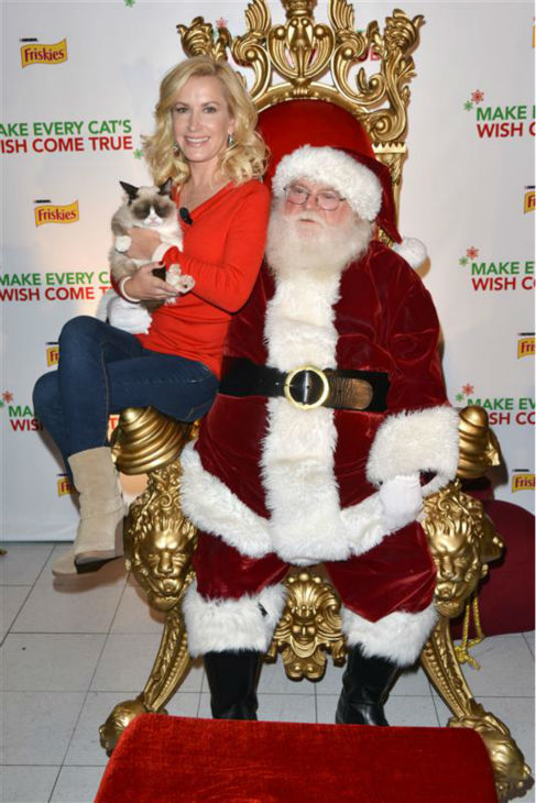&#39;The Office&#39; alum Angela Kinsey holds Internet sensation Grumpy Cat and sits beside Santa Claus at Capitol Records in Los Angeles on Dec. 10, 2013. <span class=meta>(Tony DiMaio &#47; Startraksphoto.com)</span>