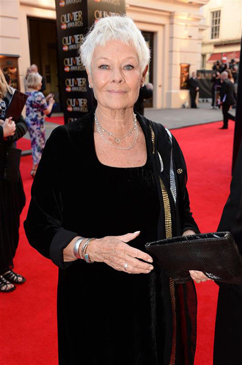 Dame Judi Dench appears at the 2014 Laurence Olivier Awards in London on April 13, 2014. She was nominated for her role in the play &#39;Peter and Alice.&#39; <span class=meta>(Richard Young &#47; Rex &#47; Startraksphoto.com)</span>