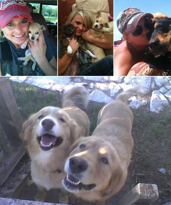 Country superstars and fianc&#233;s, Miranda Lambert and Blake Shelton have five dogs, all of which are rescues.  Earlier this year, the couple&#39;s sixth dog, Steve passed away after an accident.  Pictured: &#40;top left&#41; Miranda Lambert and Cher, &#40;top middle&#41; Delta and Cher, &#40;top right&#41; Steve and &#40;bottom&#41; Jessi and Waylon. <span class=meta>(twitter.com&#47;Miranda_Lambert)</span>