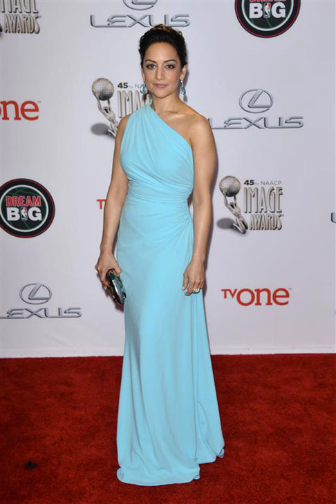 Archie Panjabi of &#39;The Good Wife&#39; appears at the 2014 NAACP Image Awards in Pasadena, California on Feb. 22, 2014. <span class=meta>(Tony DiMaio &#47; Startraksphoto.com)</span>