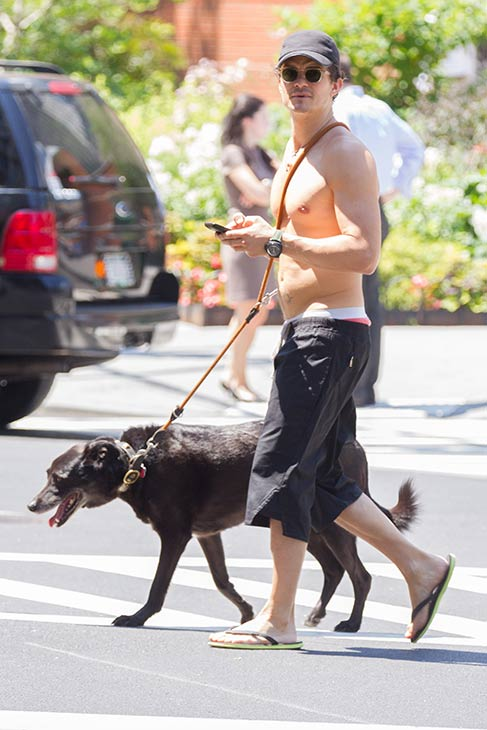 A shirtless Orlando Bloom takes a walk with his dog, Sidi, in New York City on July 16, 2013.