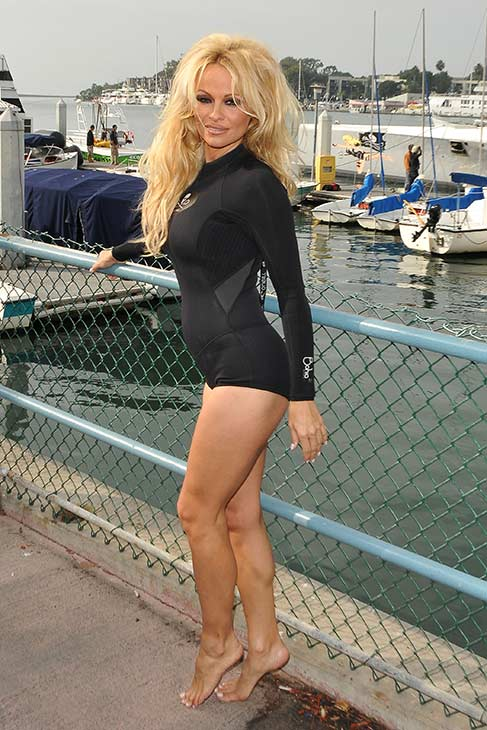 Pamela Anderson appears in a swimsuit at the launch of the 'Operation Zero Tolerance' Antarctic Whale Defense Campaign in Marina del Rey, California on Nov. 2, 2012.