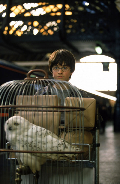 Harry Potter (Daniel Radcliffe) and his owl, Hedwig, appear in a scene from the 2001 film 'Harry Potter and the Sorcerer's Stone,' also called 'Harry Potter and the Philosopher's Stone.'
