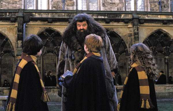 Hermione Granger &#40;Emma Watson&#41;, Ron Weasley &#40;Rupert Grint&#41; and Harry Potter &#40;Daniel Radcliffe&#41; face their friend Hagrid &#40;Robbie Coltrane&#41; in a scene from the 2002 film &#39;Harry Potter and the Chamber of Secrets.&#39; <span class=meta>(Warner Bros. Pictures)</span>