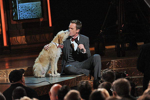 Neil Patrick Harris and Sandy the dog  Neil Patrick Harris and Sandy the dog -- from the Broadway play &#39;Annie&#39; -- appear during the Tony Awards broadcast live from Radio City Music Hall in New York City, Sunday, June 9 on the CBS Television Network.   <span class=meta>(CBS &#47; Heather Wines)</span>