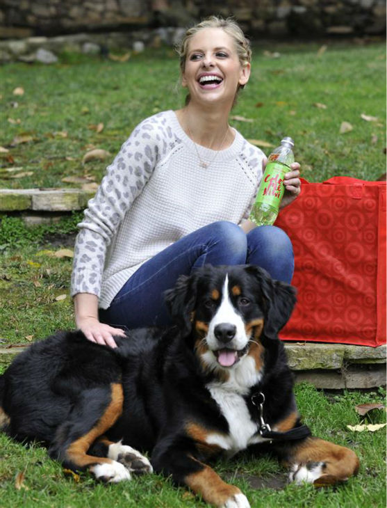 The time Sarah Michelle Gellar &#40;&#39;Buffy The Vampire Slayer,&#39; &#39;The Crazy Ones&#39;&#41; just chilled out in a park in Los Angeles with her dog, Bella, on Dec. 2, 2013. <span class=meta>(Michael Simon &#47; Startraksphoto.com)</span>