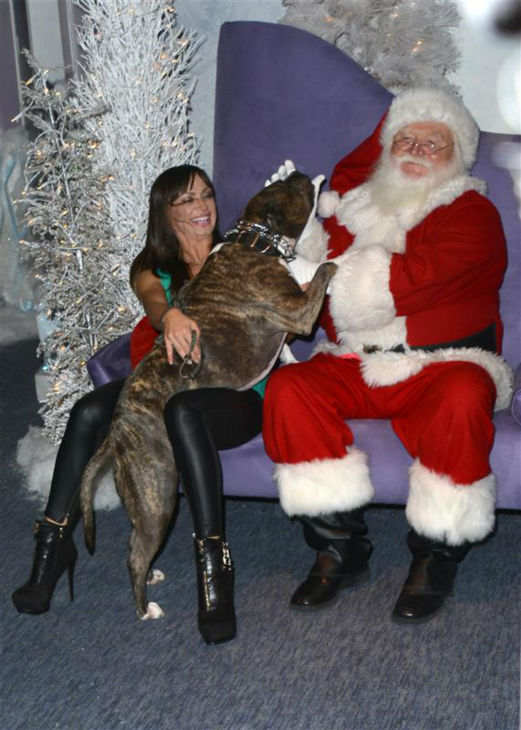 &#39;Dancing With The Stars&#39; pro dancer Karina Smirnoff tries to restrain her dog as they pose for a holiday portrait with Santa Claus at the Beverly Center shopping mall in Beverly Hills, California on Nov. 14, 2013. <span class=meta>(Tony DiMaio &#47; Startraksphoto.com)</span>