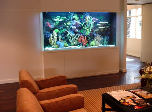 Director and producer Steven Spielberg possesses this fish tank by Acrylic Tank Manufacturing, the firm says alongside this photo posted on the company's Facebook page.