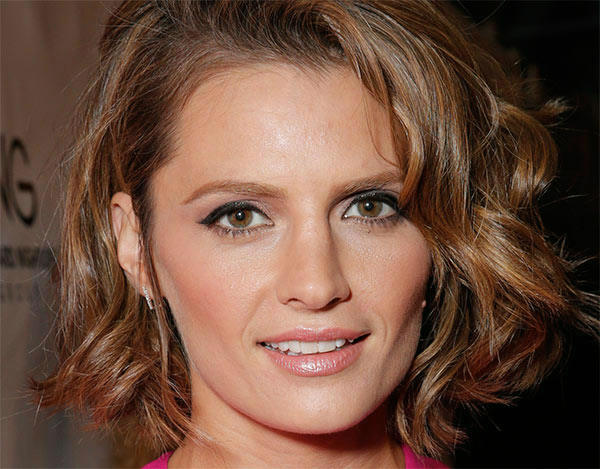 "<div class=""meta image-caption""><div class=""origin-logo origin-image ""><span></span></div><span class=""caption-text"">Stana Katic of ABC's 'Castle' attends the West Coast premiere of 'CBGB,' in which she plays rock singer Genya Ravan, at the ArcLight Hollywood theater in Los Angeles on Tuesday, Oct. 1, 2013. The event was sponsored by Ciroc. (Todd Williamson / Invision for Ciroc / AP)</span></div>"