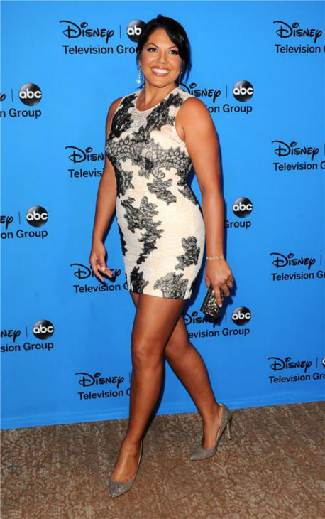 Sara Ramirez, a cast member on ABC&#39;s &#39;Grey&#39;s Anatomy,&#39; attends the Disney-ABC Television TCA panel event in Beverly Hills, California on Aug. 4, 2013. <span class=meta>(Sara De Boer &#47; startraksphoto.com)</span>