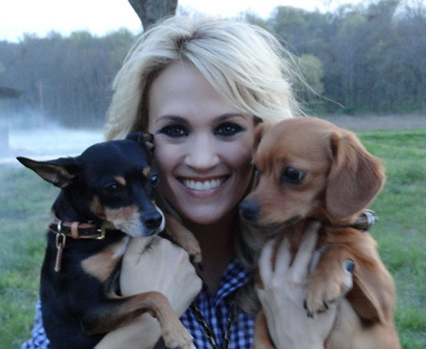 Carrie Underwood Tweeted this photo of her two dogs, Ace and Penny, on March 20, 2012, saying: &#39;Guess who came to work with me today??&#39; The &#39;American Idol&#39; alum and Grammy-winning country star told ABC News that she also plans to bring her pups along with her when she goes on tour in September 2012. <span class=meta>(t.co&#47;BWNtSvQL &#47; twitter.com&#47;carrieunderwood)</span>