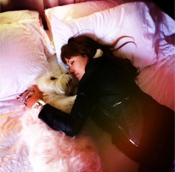 Olivia Wilde appears with one of her dogs in a photo posted on her official Twitter page.