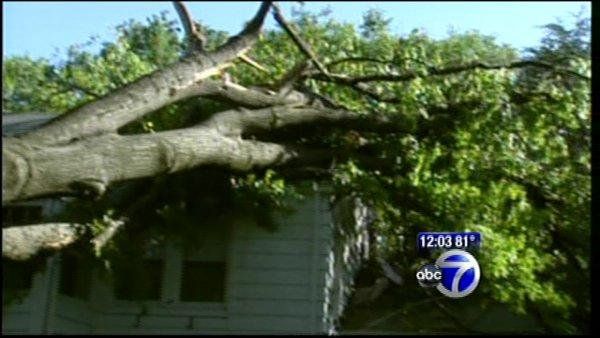 VIDEO: New Jersey storm cleanup