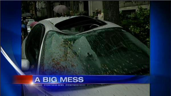 Storms leave widespread damage in the Bronx