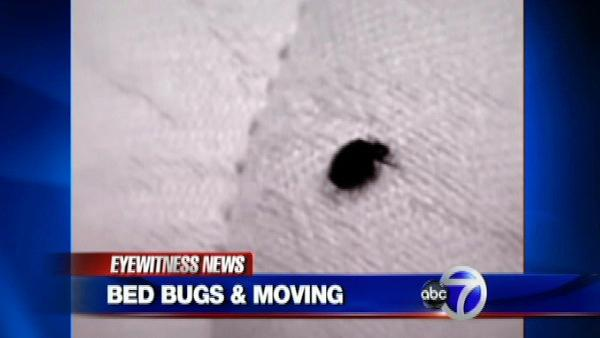 moving company uses heat and poison to kill bed bugs