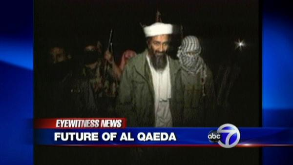 The future of al Qaeda