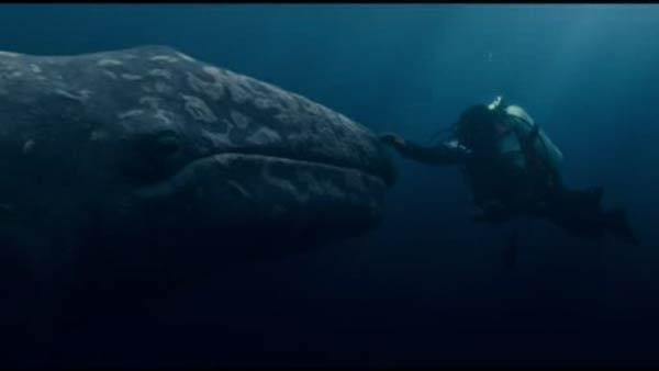 Sandy reviews 'Big Miracle,' 'Chronicle'