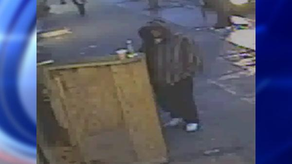 University Heights, Bronx sex assault suspect