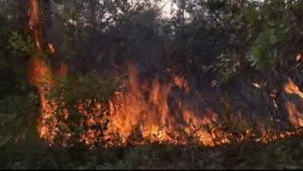 Evacuated residents return to brush fire damage